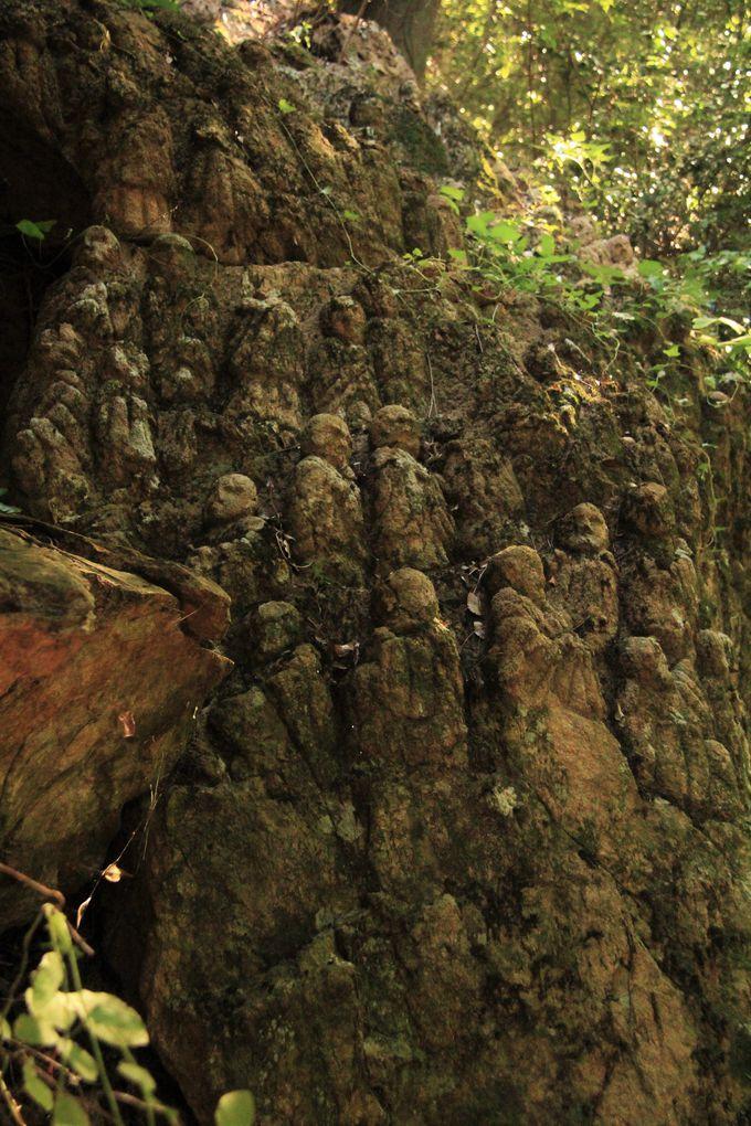 風雪に晒され、顔が溶けかかった謎の仏像群『壺坂寺・五百羅漢像』(奈良県高取町)