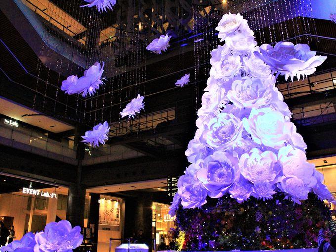 永遠に咲く華〜GRAND WISH CHRISTMAS 2016「グランフロント大阪」