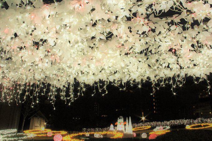 """""""冬の桜""""はずっと満開!大阪・桜ノ宮の「光のエレガンス」"""