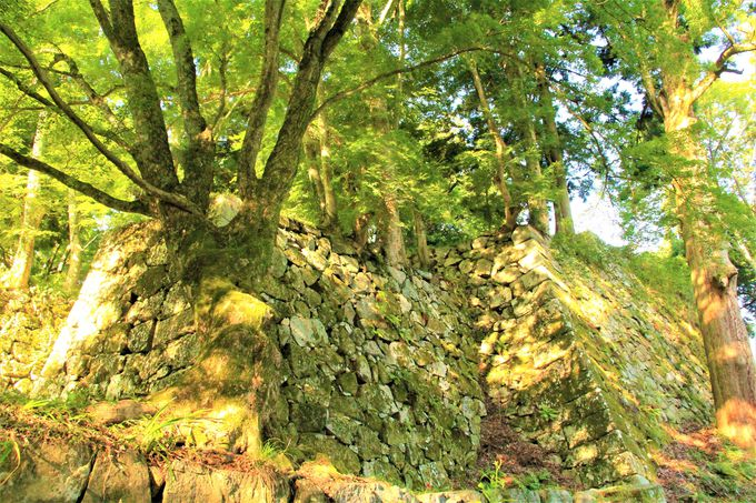 滅びの美学!あふれ出るラピュタ感!奈良県・天空の城ラピュタ「高取城跡」