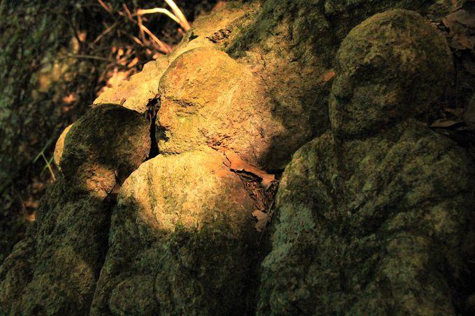 壷阪寺の奥の院「五百羅漢岩」もおすすめ!静かな祈りの聖地