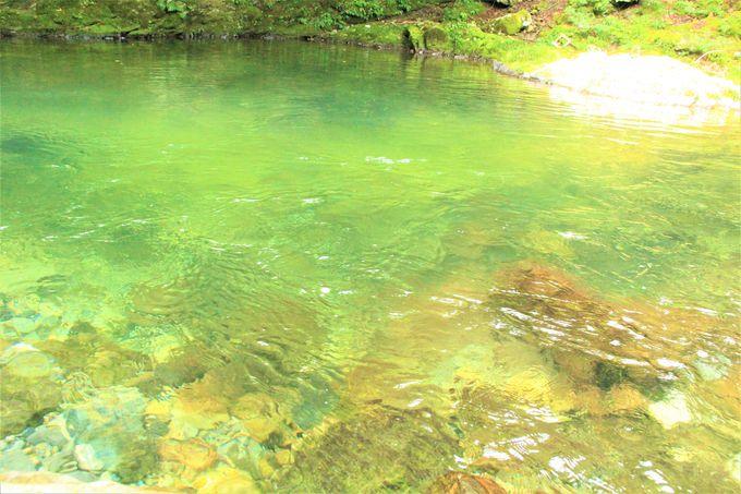ハイキング&川遊びに人気!ファミリーにもおすすめ!奈良県天川村「みたらい(御手洗)渓谷」
