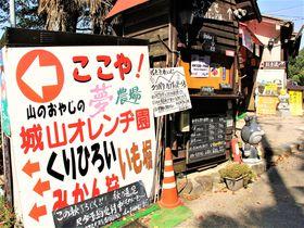 南大阪のUSJ?大阪謎の観光スポット「城山オレンヂ園」|大阪府|トラベルjp<たびねす>