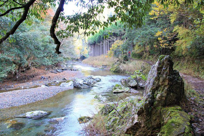 京都の隠れ里「三尾(神護寺、西明寺、高山寺)」〜清滝・錦雲渓から高尾へのアクセス、行き方