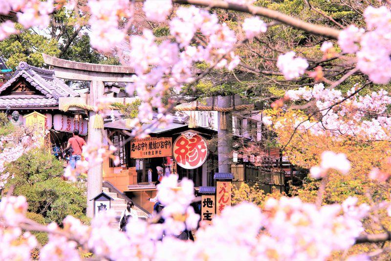 京都パワースポット〜恋愛編 「野宮神社」「貴船神社(結社)」「地主神社(清水寺)」