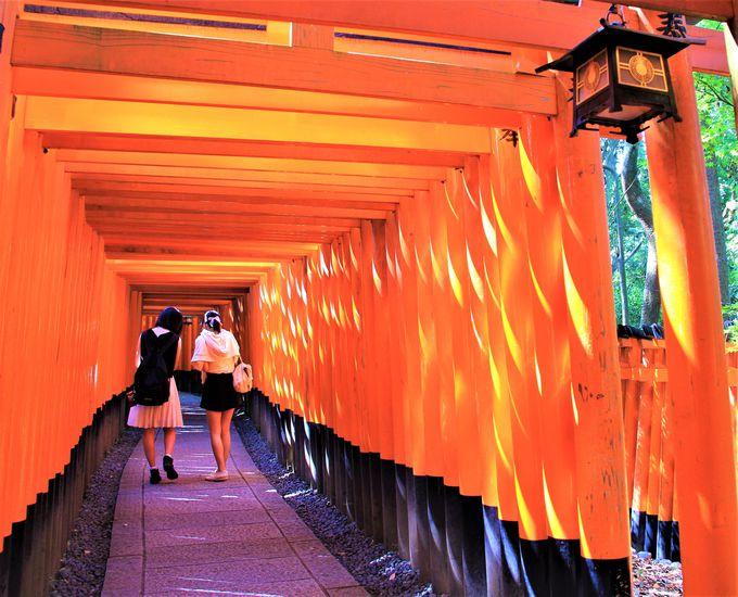 伏見稲荷大社の見どころは「千本鳥居」だけではない!裏パワースポット・伏見神寶神社の叶雛(かなえびな)