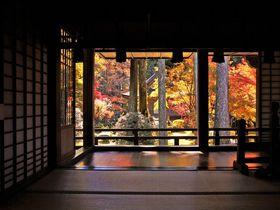 大原・三千院から寂光院へ!京都観光&紅葉の散策穴場コース