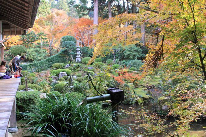 「京都・大原・三千院」の見どころは? 本堂の「往生極楽院」と、2つの庭園「聚碧園」「有清園」