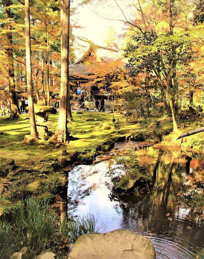三千院の庭園を映す弁財天池 極楽浄土を映した鏡
