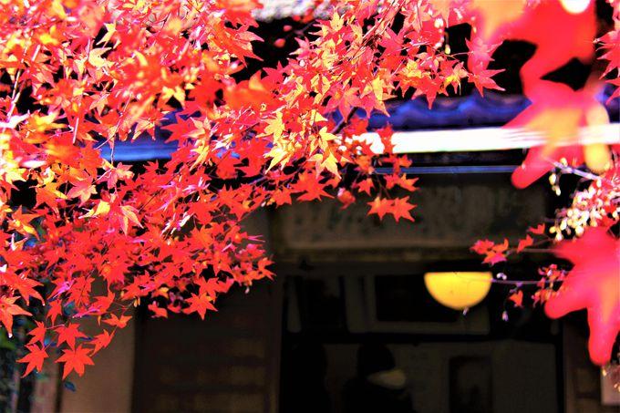 京都ひとり旅にもおすすめ!京都・嵯峨野「直指庵(じきしあん)」へのアクセス、行き方
