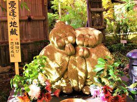 紅葉も静寂も美しい!京都観光の穴場「直指庵」~旅のノートに恋の抒情詩|京都府|トラベルjp<たびねす>