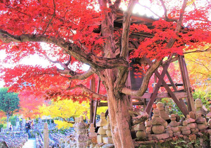 愛する人の永遠の別れ、静かな悲しみの聖地「化野念仏寺」