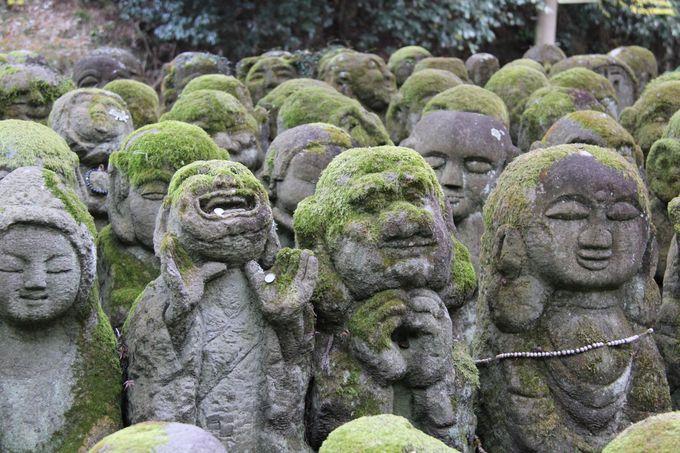 京都・奥嵯峨野の最深!穴場中の穴場スポット「愛宕念仏寺(おたぎねんぶつじ)」