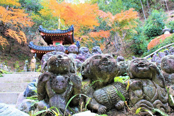 優しい微笑みに出会う!「愛宕念仏寺」の阿羅漢さま、ふれ愛観音