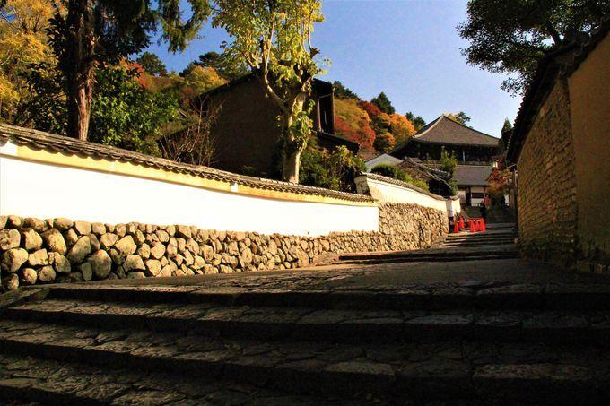 裏参道を経て東大寺「二月堂」へ。さらに「三月堂(法華堂)」「手向山八幡宮」を散策