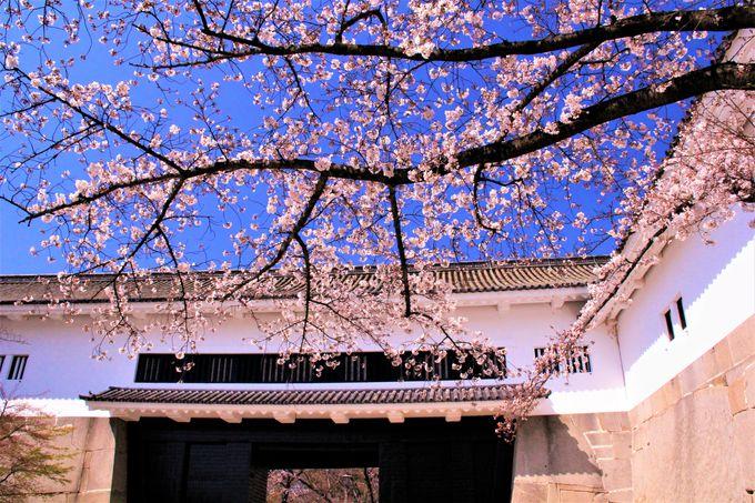 大阪城の魅力がいっぱい!「大手門」「多聞櫓」「千貫櫓」「西の丸庭園」