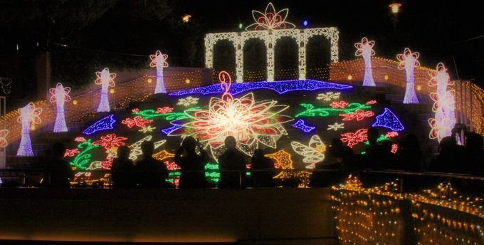 光と音の饗宴!屋上庭園に広がるファンタジー
