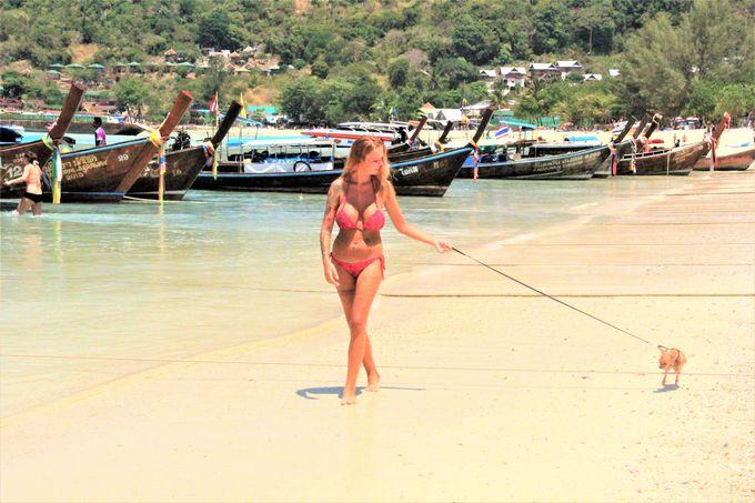 のんびり、何もしない自由な時間!タイの秘境「ピピ・ドン島」の過ごし方、楽しみ方