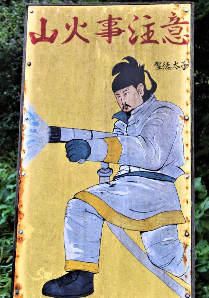 悲劇のプリンス!大津皇子が眠る二上山へハイキング
