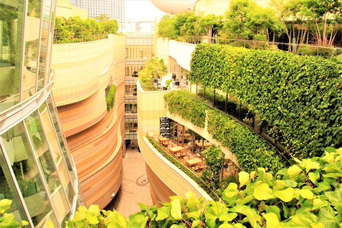 緑豊かな屋上庭園!峡谷をイメージした超穴場スポット「なんばパークス」(Namba Parks)とは?