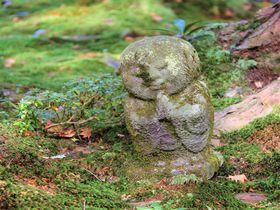 女ひとり京都旅行!三千院、高山寺、大覚寺&おすすめ観光スポット