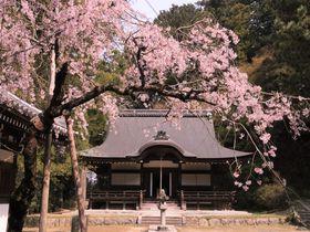 桜×紅葉の穴場!西行永眠の弘川寺は南大阪のパワースポット