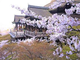 良縁&恋愛成就、運気アップ!京都の最強パワースポット神社・寺5選