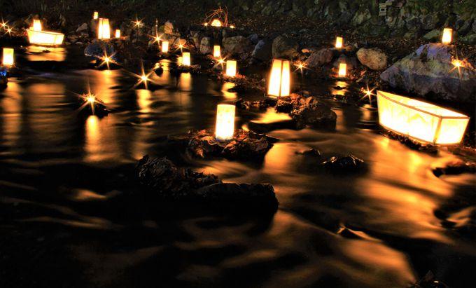 淡い蛍の光に想いを重ねた平安歌人の一途な想い【貴船神社・結社】