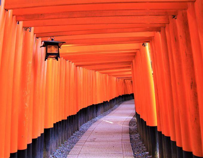 外国人が選ぶ日本の観光スポット第一位にも。京都の「伏見稲荷大社」