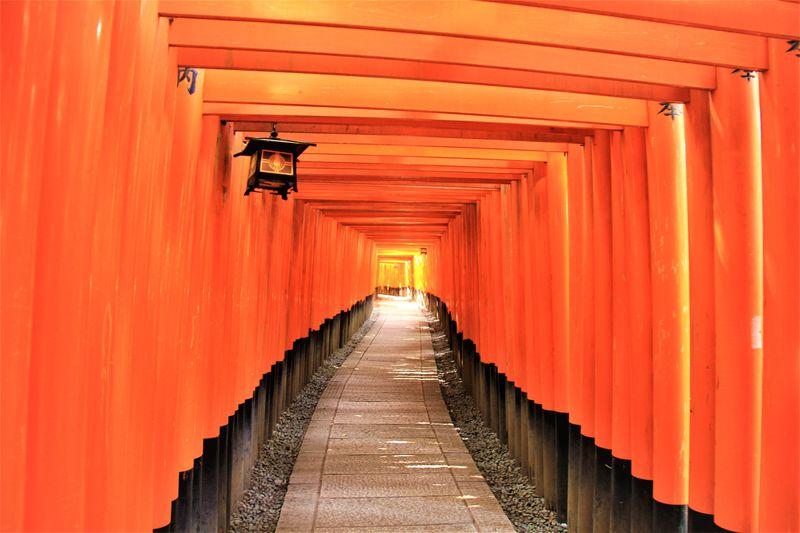 京都観光ならココ!旅の専門家おすすめスポット30選