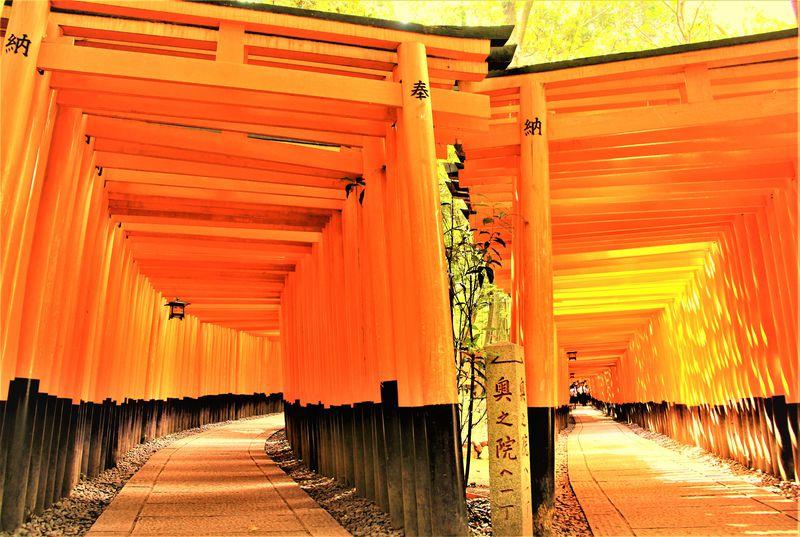外国人観光客が選ぶ人気1位!京都「伏見稲荷大社」の秘話とは?