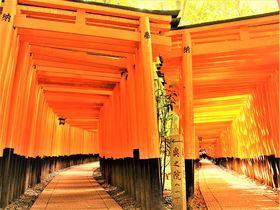 【現地徹底取材!】京都・伏見のおすすめ観光スポット10選|京都府|トラベルjp<たびねす>