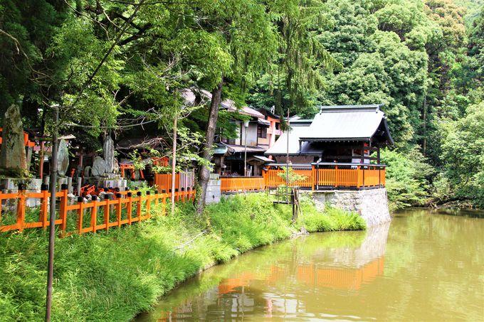 京都・伏見稲荷大社の「お山めぐり」でヒーリング&パワースポット巡り