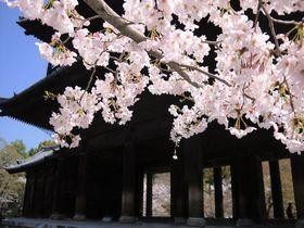 桜や紅葉の名所!京都・南禅寺から水路閣、インクラインへ歴史旅