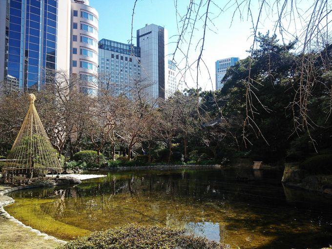 まさに都会のオアシス!ホテル中庭の日本庭園