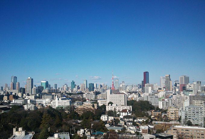 客室窓からは日本庭園!東京タワー!どちらがお好み?