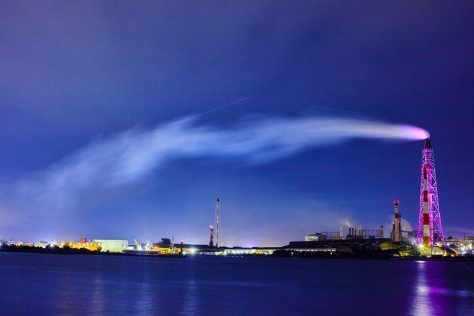 夜景を彩る「アイアンツリー」が一望できるスポット!