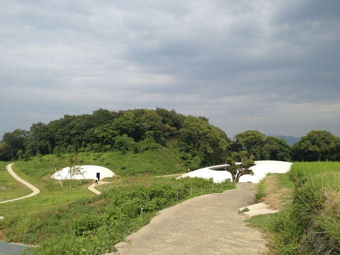 豊島美術館は、日本一創造力が必要な美術館?