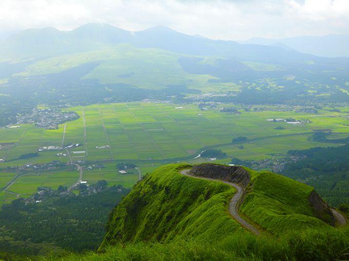 もともとは小さな農道だったラピュタの道