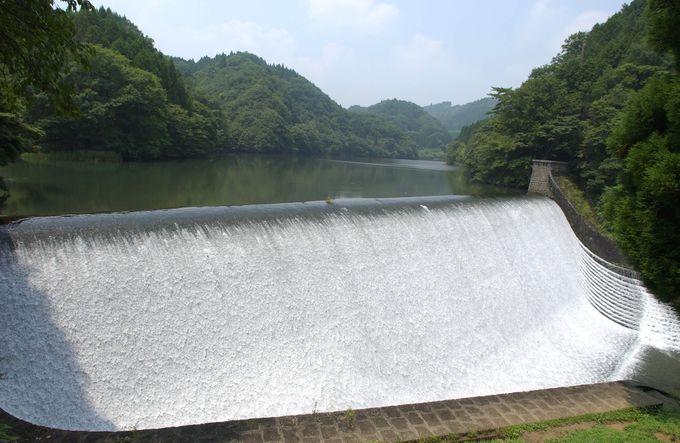 白水ダム右岸は、貯水池全景を望むポイント