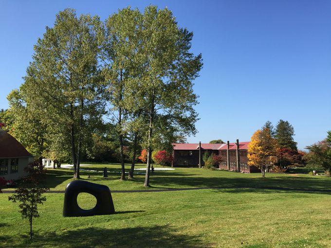 炭鉱の町の閉校となった小学校が美しい彫刻美術館に