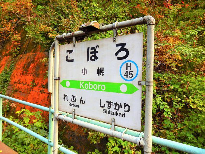 これぞ日本一の秘境駅!家なし、道なし、なぜ駅がある?