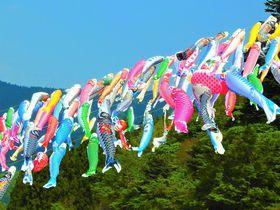 群馬のチベットに口下手なこいのぼり?神流町鯉のぼり祭り|群馬県|トラベルjp<たびねす>