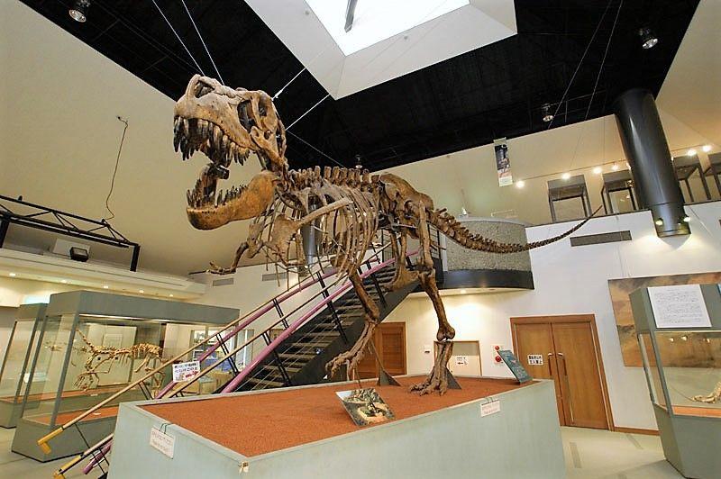 家族旅行に最高!神流町には恐竜の足跡や恐竜センターも