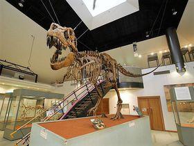 関東にも恐竜王国が!群馬・神流町恐竜センターと恐竜の足跡化石|群馬県|トラベルjp<たびねす>