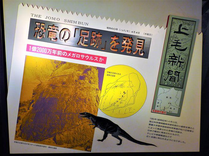 恐竜王国発祥の由来は、恐竜の足跡から