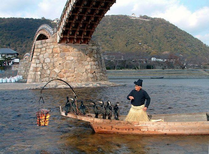 意外にスゴイ!錦帯橋の鵜飼の歴史