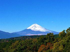 旧東海道箱根越えウォーキングは、涙のあとに絶景ごほうび!