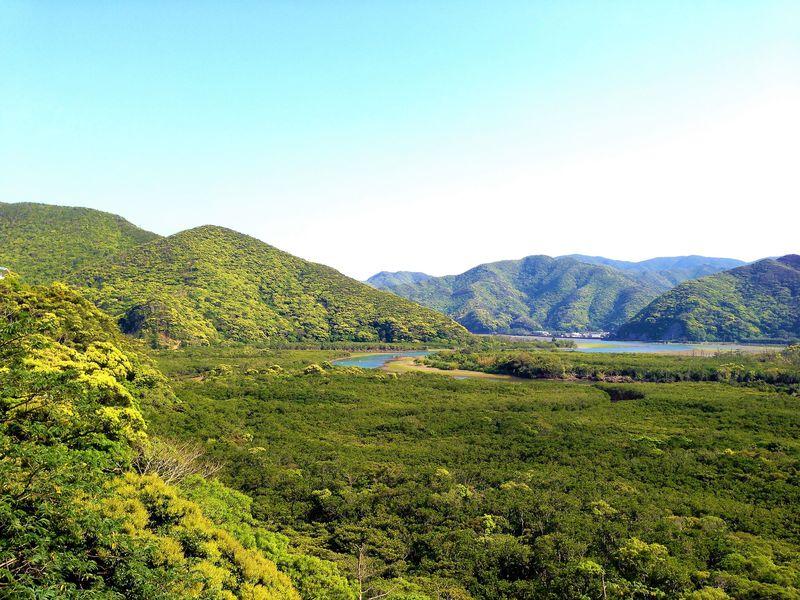 想像以上の青と緑!奄美大島絶景めぐり1日ドライブ