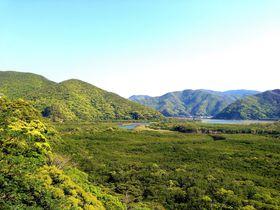 奄美大島観光におすすめ!青と緑の絶景ドライブ!